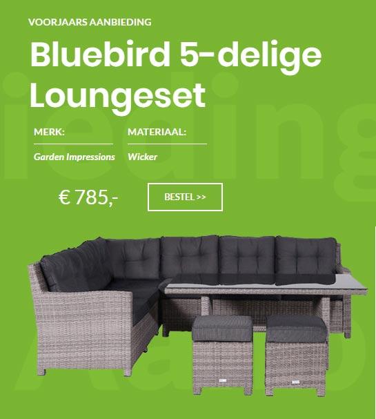 Bluebird aanbieding